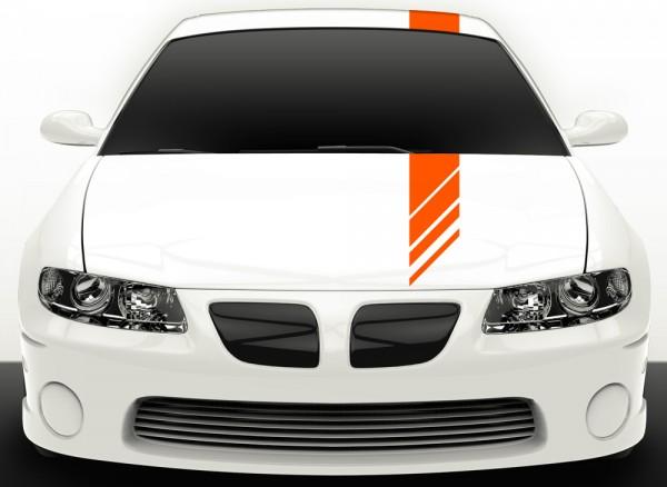 Autoaufkleber Viperstreifen X7022