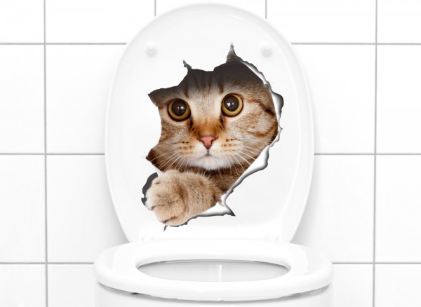 Wandtattoo niedliche Katze W5304