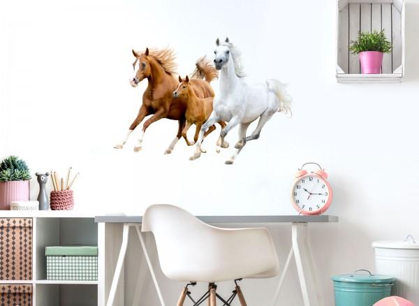 Little Deco Wandtattoo Pferde DL475